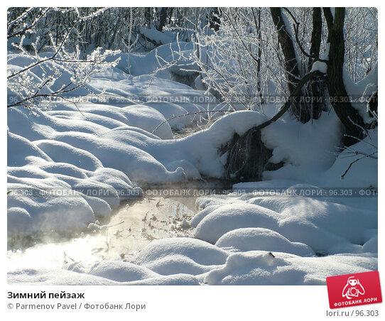 Купить «Зимний пейзаж», фото № 96303, снято 12 февраля 2007 г. (c) Parmenov Pavel / Фотобанк Лори