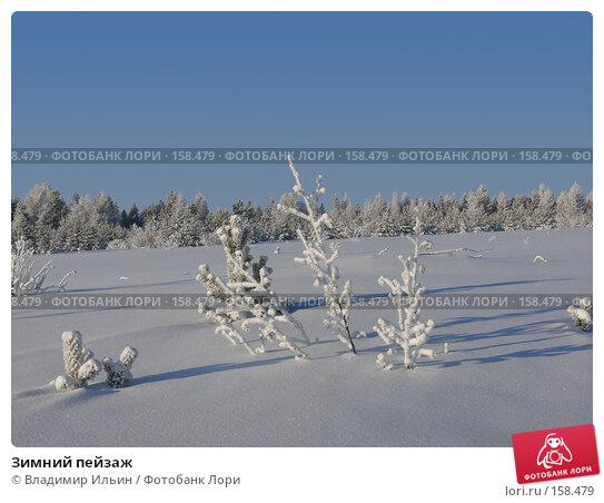 Зимний пейзаж, фото № 158479, снято 23 декабря 2007 г. (c) Владимир Ильин / Фотобанк Лори