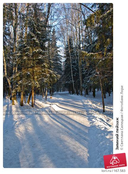 Купить «Зимний пейзаж», фото № 167583, снято 7 января 2008 г. (c) Светлана Силецкая / Фотобанк Лори
