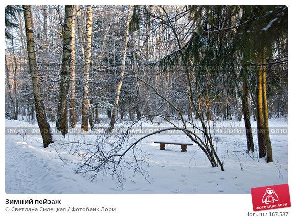 Купить «Зимний пейзаж», фото № 167587, снято 7 января 2008 г. (c) Светлана Силецкая / Фотобанк Лори