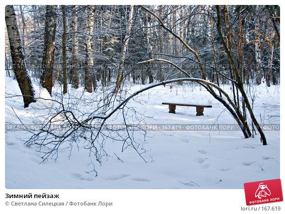 Зимний пейзаж, фото № 167619, снято 7 января 2008 г. (c) Светлана Силецкая / Фотобанк Лори