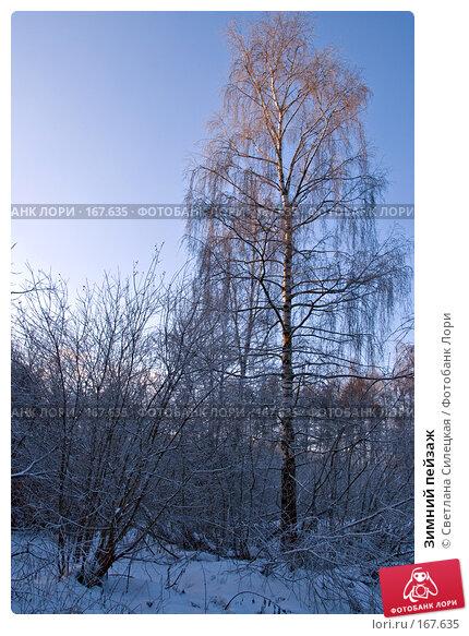 Зимний пейзаж, фото № 167635, снято 7 января 2008 г. (c) Светлана Силецкая / Фотобанк Лори