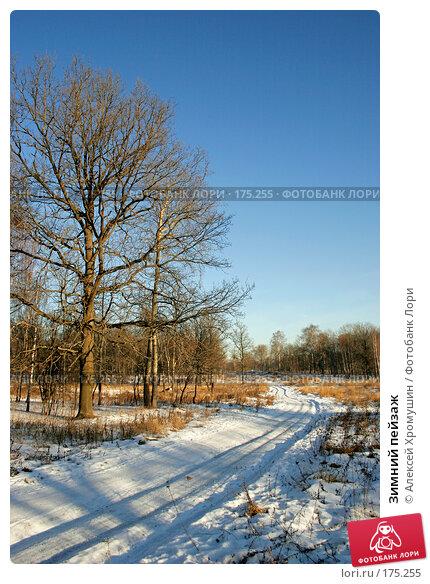 Зимний пейзаж, фото № 175255, снято 23 декабря 2007 г. (c) Алексей Хромушин / Фотобанк Лори