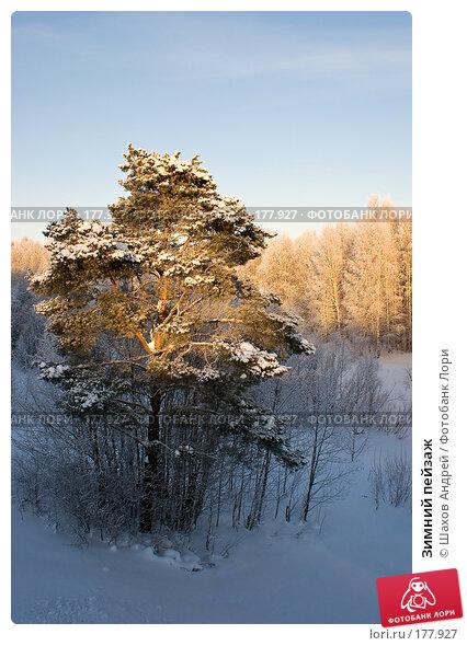 Зимний пейзаж, фото № 177927, снято 9 января 2008 г. (c) Шахов Андрей / Фотобанк Лори