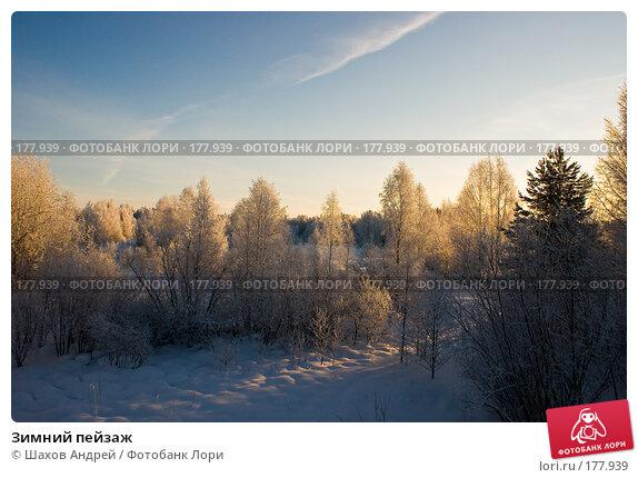 Зимний пейзаж, фото № 177939, снято 9 января 2008 г. (c) Шахов Андрей / Фотобанк Лори