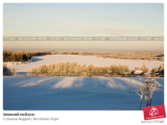Купить «Зимний пейзаж», фото № 177967, снято 9 января 2008 г. (c) Шахов Андрей / Фотобанк Лори