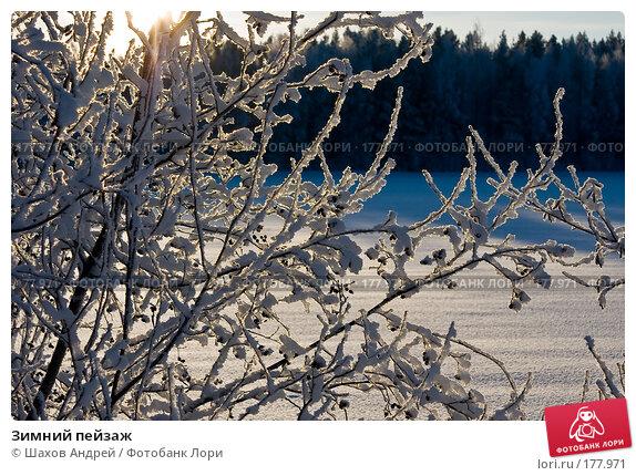 Зимний пейзаж, фото № 177971, снято 9 января 2008 г. (c) Шахов Андрей / Фотобанк Лори