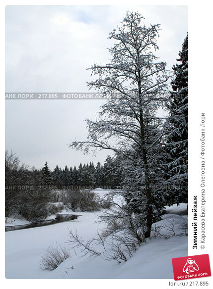 Зимний пейзаж, фото № 217895, снято 3 февраля 2008 г. (c) Карасева Екатерина Олеговна / Фотобанк Лори