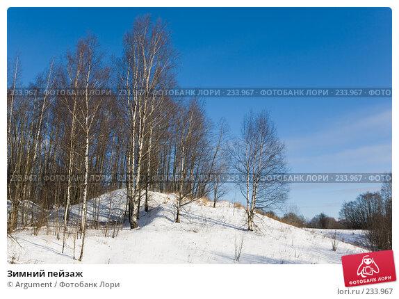 Купить «Зимний пейзаж», фото № 233967, снято 19 февраля 2008 г. (c) Argument / Фотобанк Лори