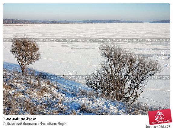 Зимний пейзаж, фото № 236675, снято 7 января 2008 г. (c) Дмитрий Яковлев / Фотобанк Лори
