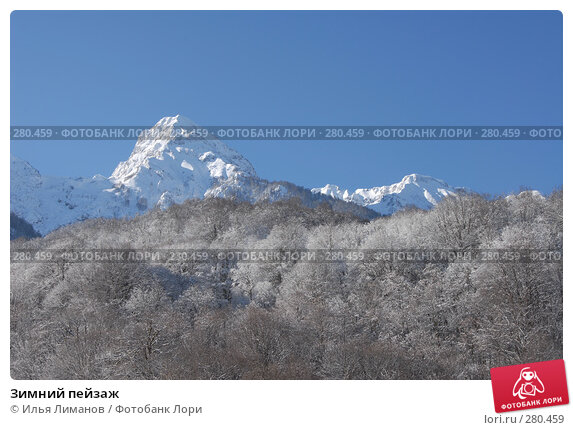 Зимний пейзаж, фото № 280459, снято 25 февраля 2007 г. (c) Илья Лиманов / Фотобанк Лори