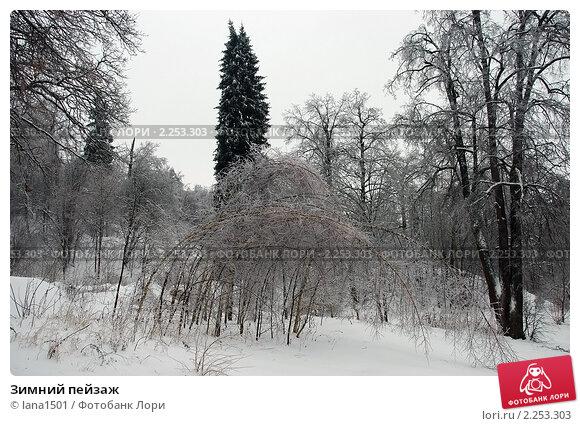 Купить «Зимний пейзаж», эксклюзивное фото № 2253303, снято 27 декабря 2010 г. (c) lana1501 / Фотобанк Лори