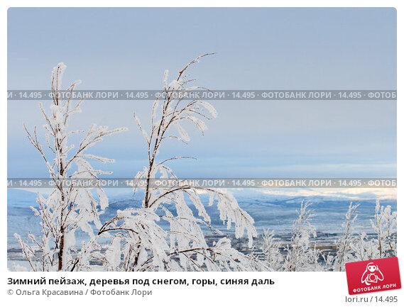 Зимний пейзаж, деревья под снегом, горы, синяя даль, фото № 14495, снято 3 ноября 2006 г. (c) Ольга Красавина / Фотобанк Лори