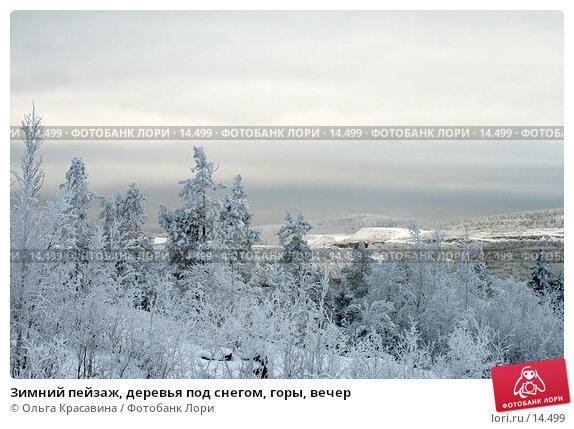 Купить «Зимний пейзаж, деревья под снегом, горы, вечер», фото № 14499, снято 3 ноября 2006 г. (c) Ольга Красавина / Фотобанк Лори
