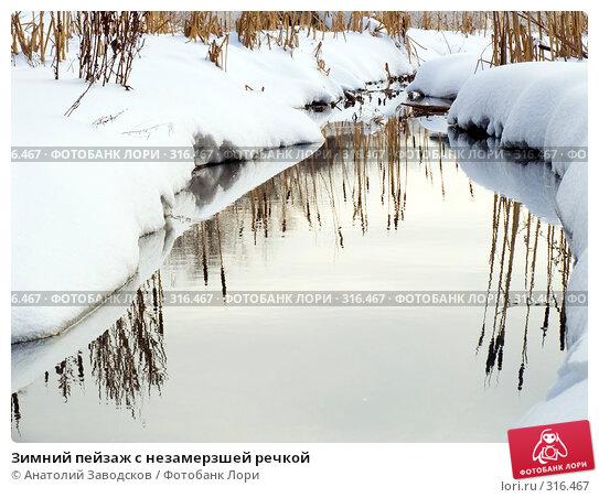 Зимний пейзаж с незамерзшей речкой, фото № 316467, снято 19 февраля 2005 г. (c) Анатолий Заводсков / Фотобанк Лори