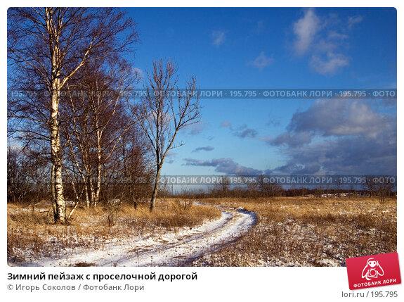 Зимний пейзаж с проселочной дорогой, фото № 195795, снято 3 февраля 2008 г. (c) Игорь Соколов / Фотобанк Лори