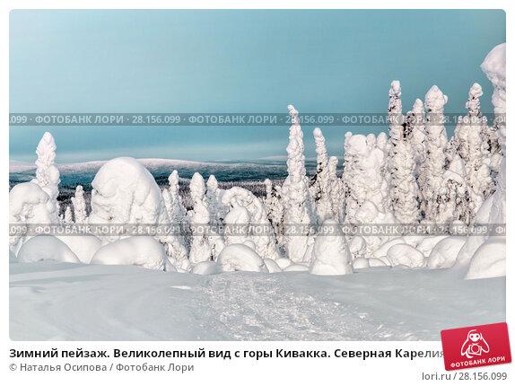 Купить «Зимний пейзаж. Великолепный вид с горы Кивакка. Северная Карелия. Россия», фото № 28156099, снято 8 марта 2018 г. (c) Наталья Осипова / Фотобанк Лори