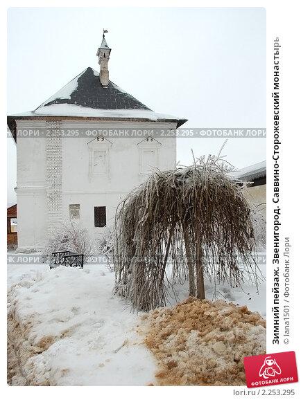 Купить «Зимний пейзаж. Звенигород. Саввино-Сторожевский монастырь», эксклюзивное фото № 2253295, снято 27 декабря 2010 г. (c) lana1501 / Фотобанк Лори