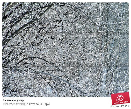 Купить «Зимний узор», фото № 97359, снято 12 февраля 2007 г. (c) Parmenov Pavel / Фотобанк Лори