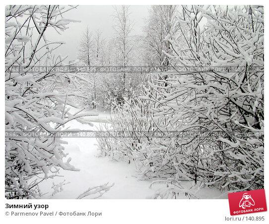 Зимний узор, фото № 140895, снято 15 февраля 2007 г. (c) Parmenov Pavel / Фотобанк Лори