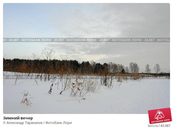 Зимний вечер, эксклюзивное фото № 43087, снято 22 июля 2017 г. (c) Александр Тараканов / Фотобанк Лори