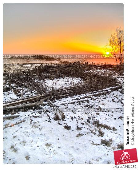 Зимний закат, фото № 248239, снято 28 марта 2008 г. (c) Liseykina / Фотобанк Лори