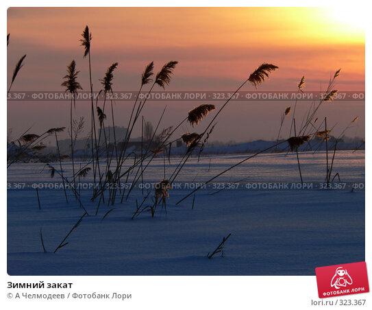 Зимний закат, фото № 323367, снято 18 февраля 2006 г. (c) A Челмодеев / Фотобанк Лори
