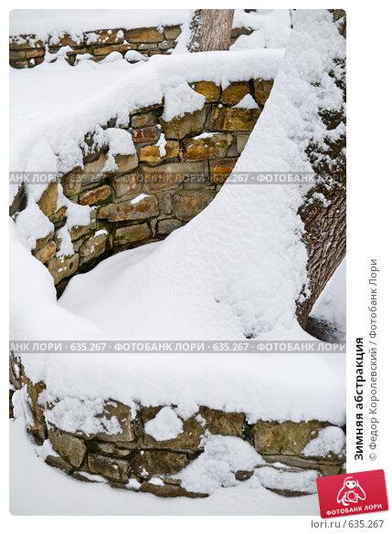 Купить «Зимняя абстракция», фото № 635267, снято 27 декабря 2008 г. (c) Федор Королевский / Фотобанк Лори