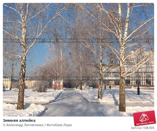 Зимняя аллейка, фото № 138931, снято 28 ноября 2007 г. (c) Александр Литовченко / Фотобанк Лори