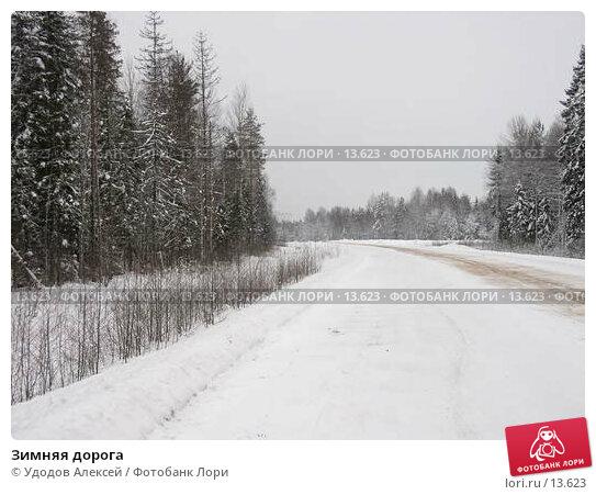 Зимняя дорога, фото № 13623, снято 22 июля 2017 г. (c) Удодов Алексей / Фотобанк Лори