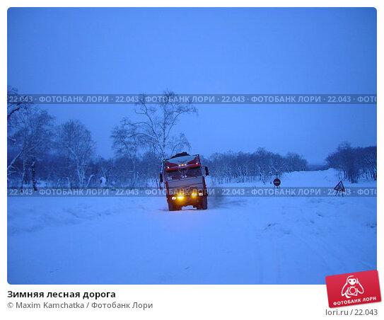 Зимняя лесная дорога, фото № 22043, снято 16 января 2007 г. (c) Maxim Kamchatka / Фотобанк Лори