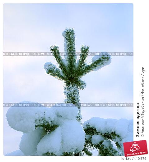 Купить «Зимняя одежда», фото № 110679, снято 4 ноября 2007 г. (c) Анатолий Теребенин / Фотобанк Лори