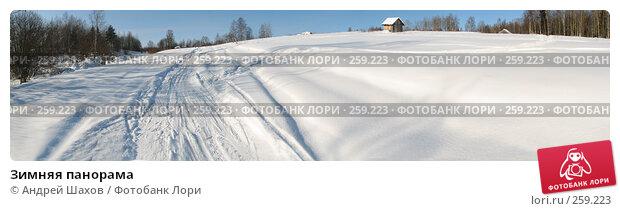 Купить «Зимняя панорама», фото № 259223, снято 23 марта 2018 г. (c) Андрей Шахов / Фотобанк Лори