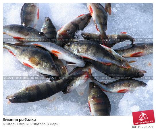 Зимняя рыбалка, фото № 76271, снято 14 апреля 2007 г. (c) Игорь Олюнин / Фотобанк Лори