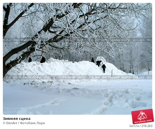 Купить «Зимняя сцена», фото № 218263, снято 25 апреля 2018 г. (c) ElenArt / Фотобанк Лори