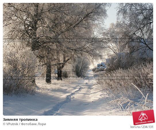 Купить «Зимняя тропинка», фото № 234131, снято 30 ноября 2004 г. (c) VPutnik / Фотобанк Лори