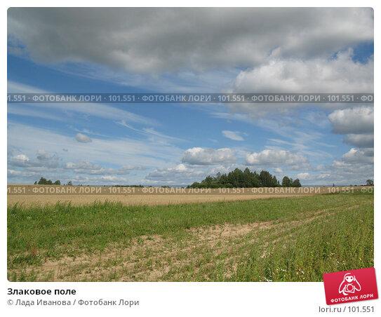 Купить «Злаковое поле», фото № 101551, снято 22 июля 2007 г. (c) Лада Иванова / Фотобанк Лори