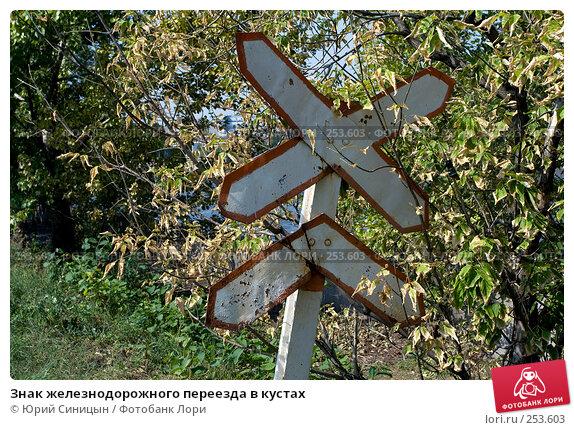 Знак железнодорожного переезда в кустах, фото № 253603, снято 16 августа 2007 г. (c) Юрий Синицын / Фотобанк Лори