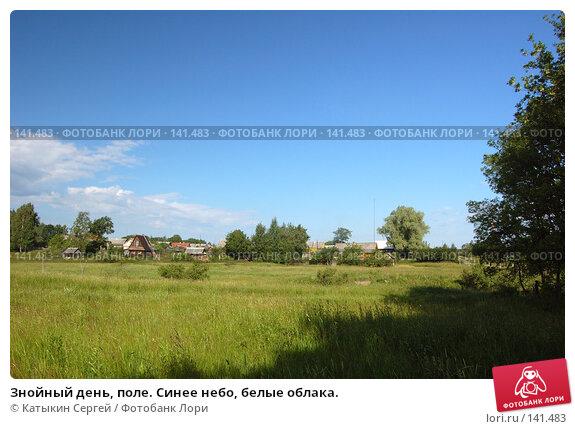 Знойный день, поле. Синее небо, белые облака., фото № 141483, снято 24 июня 2007 г. (c) Катыкин Сергей / Фотобанк Лори