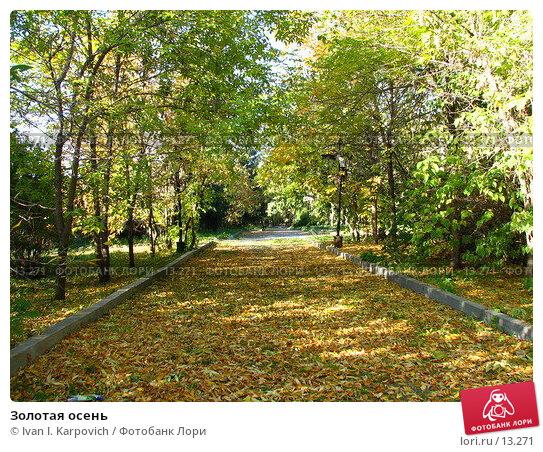 Золотая осень, фото № 13271, снято 25 сентября 2005 г. (c) Ivan I. Karpovich / Фотобанк Лори