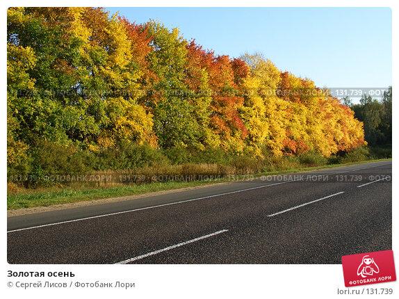 Золотая осень, фото № 131739, снято 24 сентября 2006 г. (c) Сергей Лисов / Фотобанк Лори