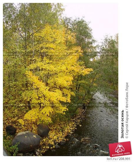 Золотая осень, фото № 208991, снято 1 октября 2005 г. (c) Сергей Карцов / Фотобанк Лори
