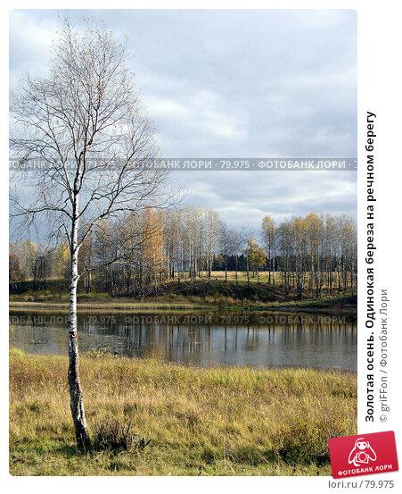 Золотая осень. Одинокая береза на речном берегу, фото № 79975, снято 17 января 2017 г. (c) griFFon / Фотобанк Лори