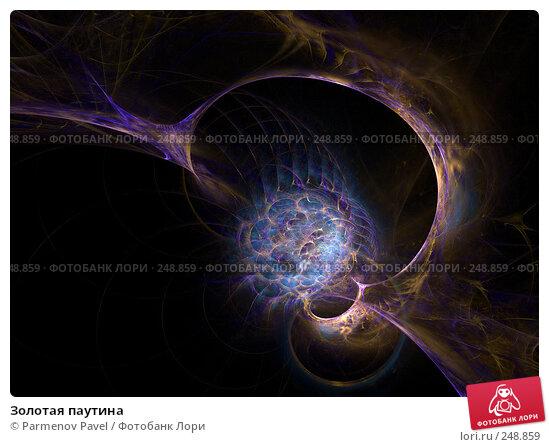 Золотая паутина, иллюстрация № 248859 (c) Parmenov Pavel / Фотобанк Лори