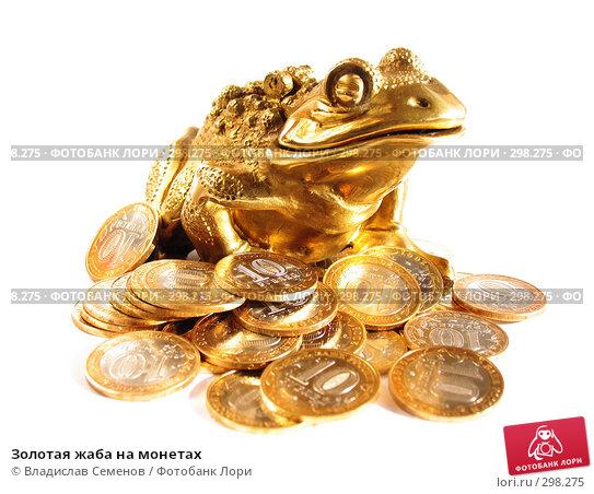 Купить «Золотая жаба на монетах», фото № 298275, снято 24 мая 2008 г. (c) Владислав Семенов / Фотобанк Лори