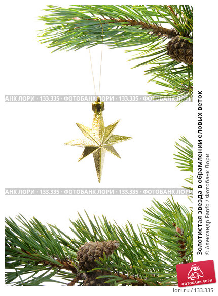 Золотистая звезда в обрамлении еловых веток, фото № 133335, снято 18 января 2017 г. (c) Александр Fanfo / Фотобанк Лори