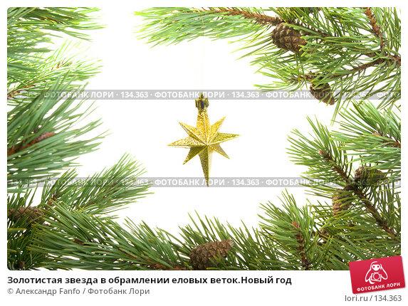 Золотистая звезда в обрамлении еловых веток.Новый год, фото № 134363, снято 27 июля 2017 г. (c) Александр Fanfo / Фотобанк Лори
