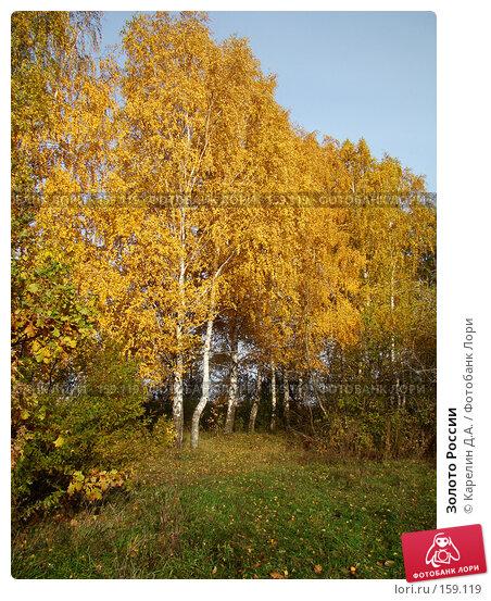 Золото России, фото № 159119, снято 19 октября 2007 г. (c) Карелин Д.А. / Фотобанк Лори