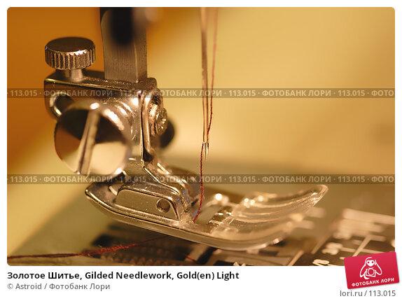 Золотое Шитье, Gilded Needlework, Gold(en) Light, фото № 113015, снято 1 января 2007 г. (c) Astroid / Фотобанк Лори