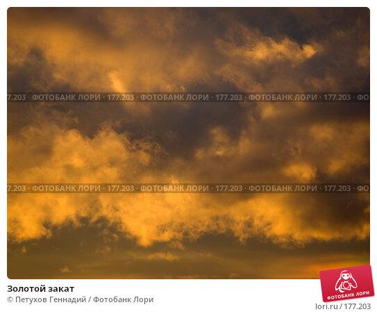 Золотой закат, фото № 177203, снято 9 октября 2007 г. (c) Петухов Геннадий / Фотобанк Лори